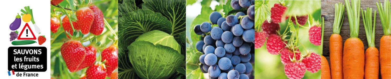 Sauvons les Fruits et Légumes de France